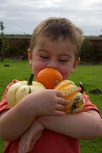 William Autumn Harvest_08