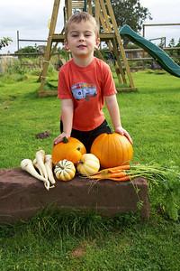 William Autumn Harvest_04