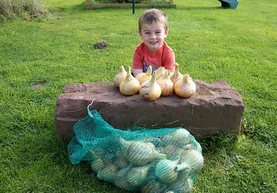 William Autumn Harvest_19