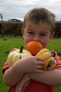 William Autumn Harvest_10