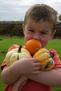 William Autumn Harvest_11