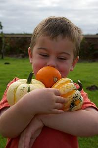 William Autumn Harvest_09