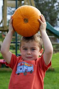 William Autumn Harvest_06