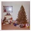 Williams Family Photos 00289