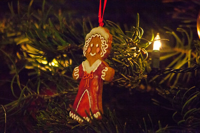 Rich and Tanya's Christmas tree with the Marth and George Washington figures.