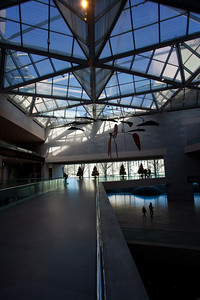 The Art gallery.