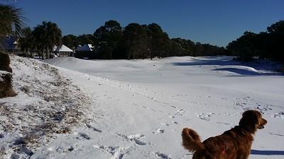 Wllmington Snow 1-18