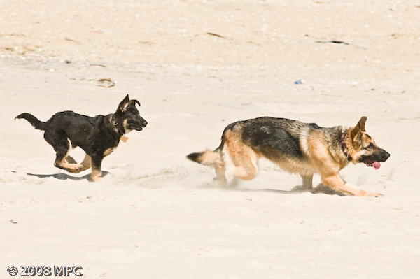 Easter_Beach_Day_(11_of_19)