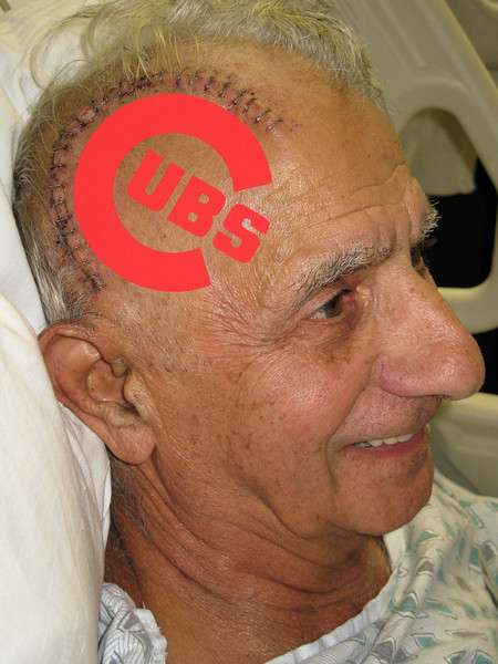 Now THIS is a Cubs fan!