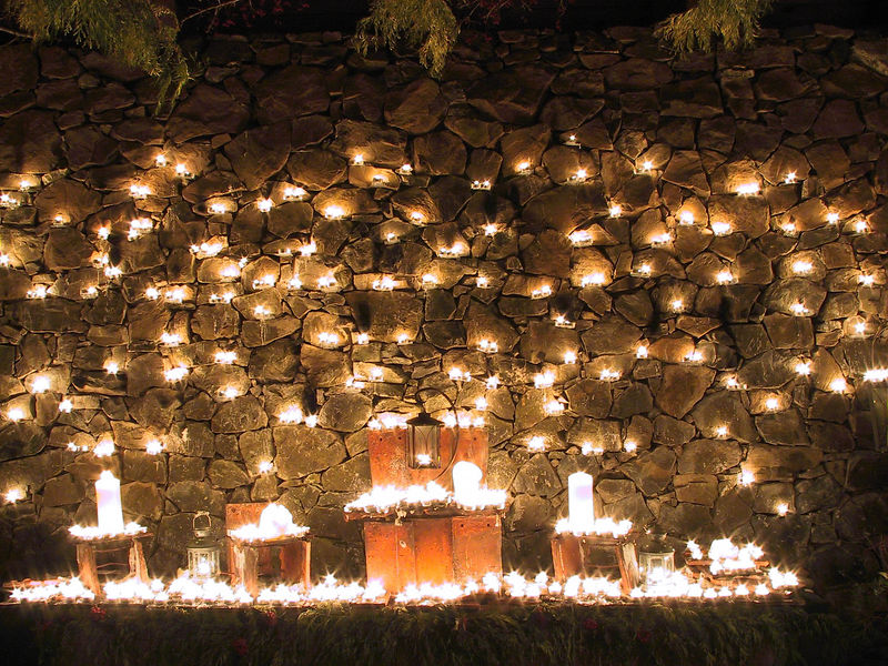 """""""Wall of Light""""<br /> <br /> Van Dusen Gardens in Vancouver. Each candle represents a donation made to the Sick Children Hospital."""