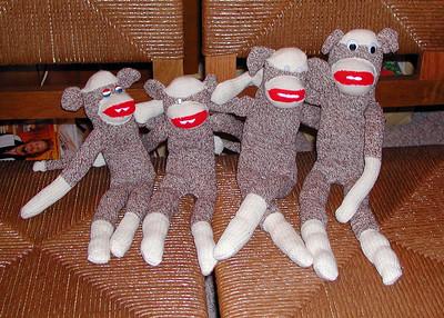 Year 2001 Monkey
