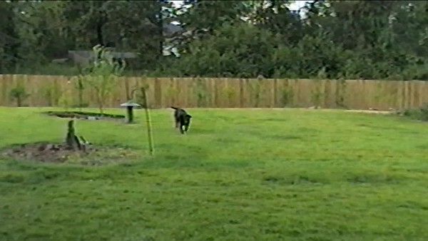 Sept 1997 420 Wynlake outside