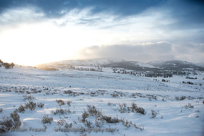 Sunrise in Yellowstone National Park.