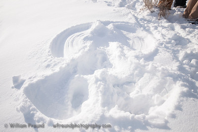 Beth's expertly made snow angel!