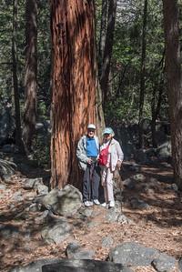 Yosemite-20160517095832-4150