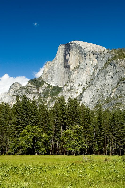Back on the valley floor, this is an afternoon picture of Half Dome across one of the many meadows in Yosemite Valley.  The meadows were beautiful, but many of them are still flooded from the small flood they had a few weeks before we got there.