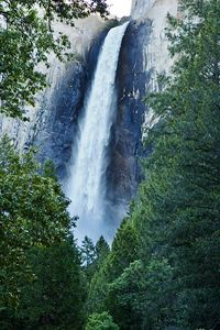 This is BridalVeil falls in the early morning before the sun hits it.  We tried to hike to the base of the falls, but it was a downpour of heavy mist anywhere within 1/4 mile of the base of the falls because there was just so much water.