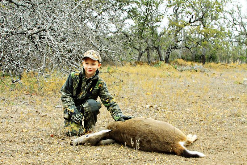 deer 005 1