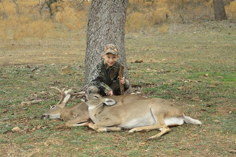 deer 076
