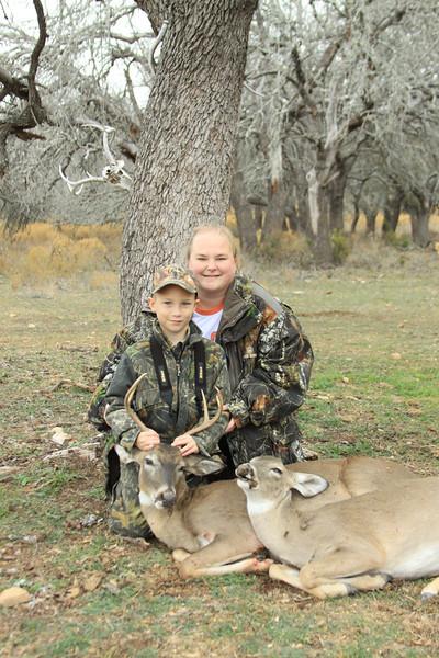 deer 071