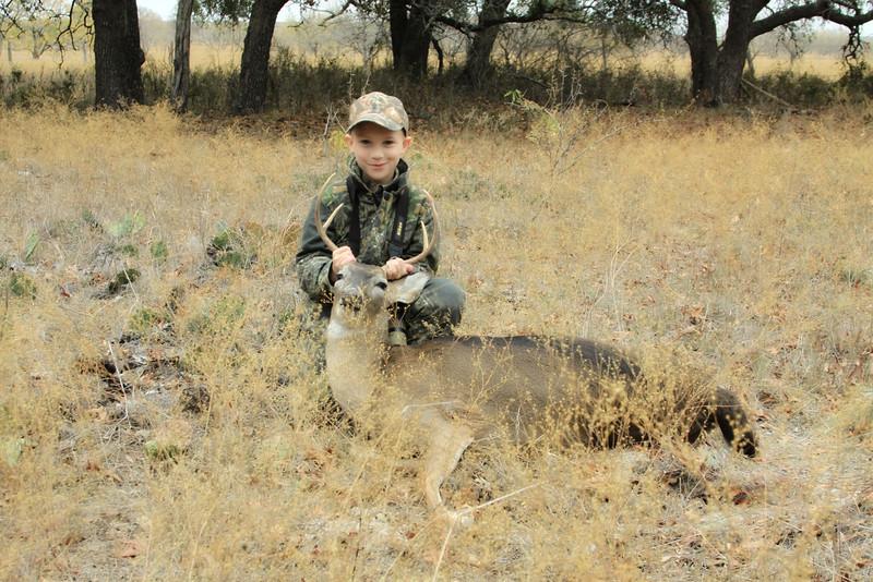 deer 024 1