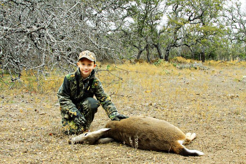 deer 004 1