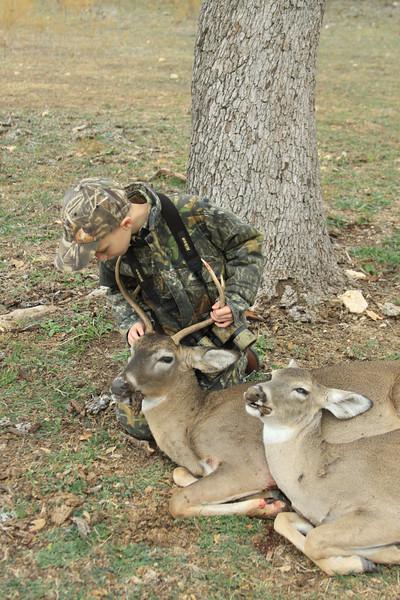 deer 069