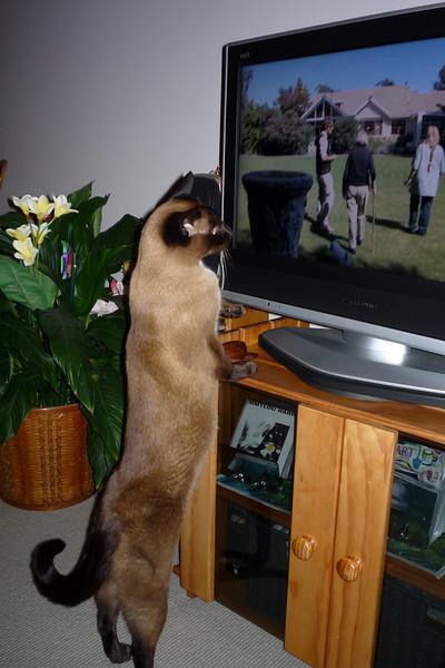 Watching TV even closer!