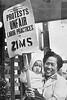 Labor1$zims-strike-1