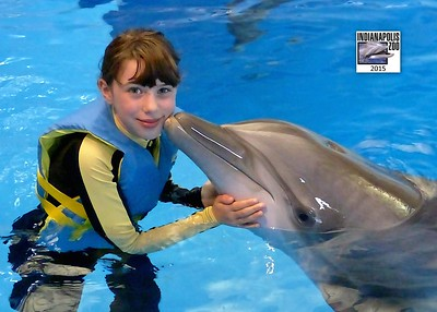Zoo and Dolphins 2015