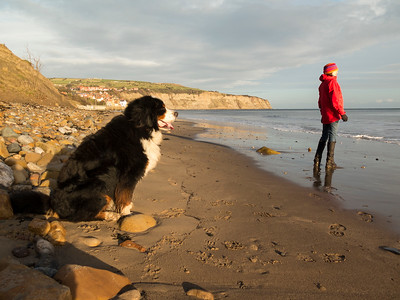 Robin Hoods Bay beach.....dog walking heave