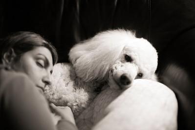 Puppy Love M Monochrom, Noctilux