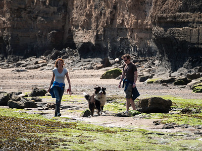 walking the dog on Robin Hoods Bay beach, North Yorkshire