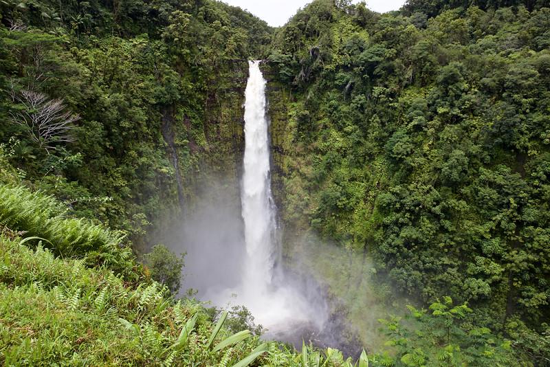 Akaka Falls drops 420 feet