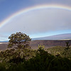 A rainbow welcome while we ate breakfast at the Volcano House. (Native 'Ohi'a lehua tree in foreground. An amakihi, not seen here, was foraging in it.)