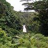Akaka Falls, near Hilo.