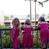 Arrival at Hapuna Prince Beach Hotel on the Island of Hawaii on August 8, after an 11-hour JFK-Honolulu flight and then a 45-minute flight to Kona, and three rental cars for the 12 of us: 6 adults, 6 children (including 4 three-year-olds.) Here are the triplets: Clio (with lei), Makeda and Anahita, in the Frozen-themed dresses that Bev made for them.