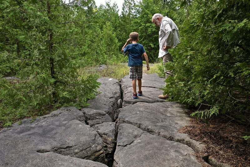 Fossils cover the Chazy Reef on Isle La Motte. It is more than 480 million years old.