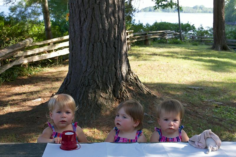 Clio, Makeda and Anahita, 17 months