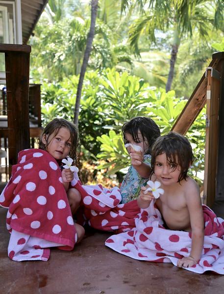 Plumerias offered by Clio, Anahita and Makeda