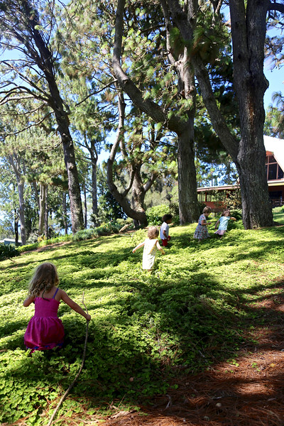 Children running through the nasturtiums in front of Puu Pueo