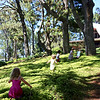 Children running through the nasturtiums in front of Puu Pueo