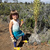 Anahita with a Silver Sword in bloom.
