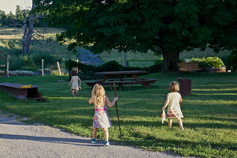The girls head toward the sheep.