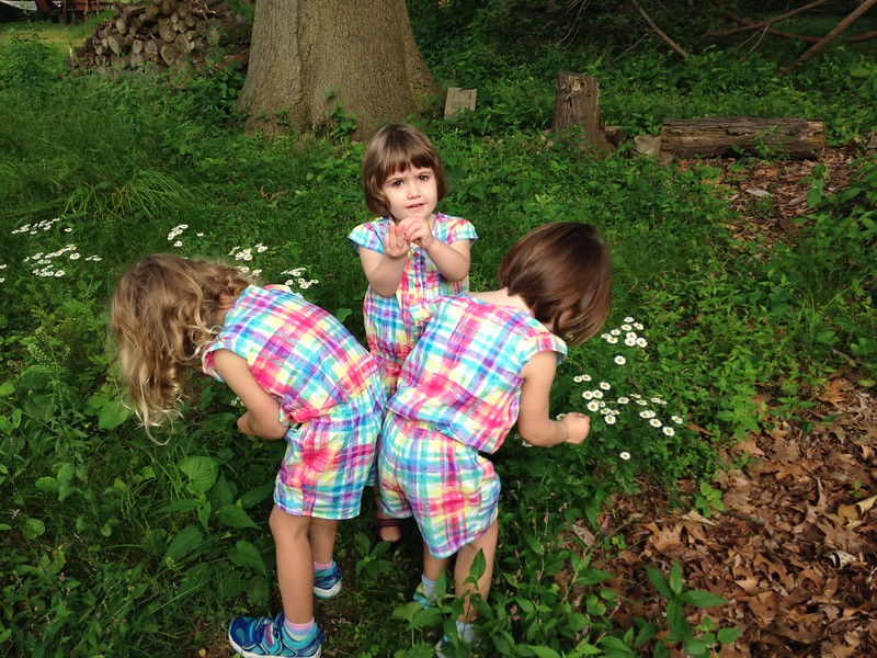 Clio, Makeda and Anahita picking camomile in our backyard in Hamden, CT.