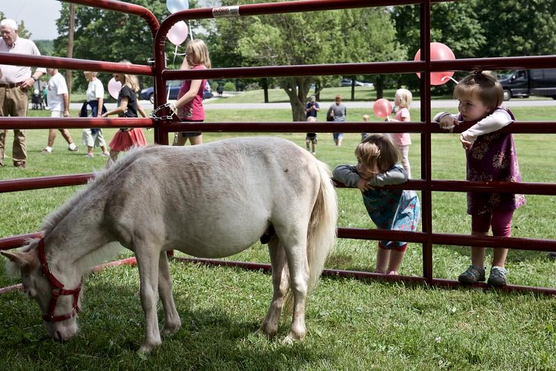 Anahita joins Makeda watching the miniature horse