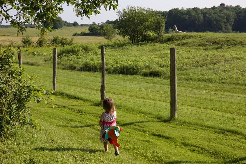 Anahita sets off to see the llama.