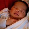 Masha, 11 days old, sleeping blissfully.