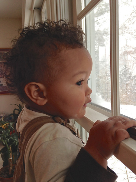 Baye  admires the snow from the warmth of our kitchen.