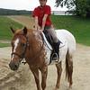 Horses0617030001